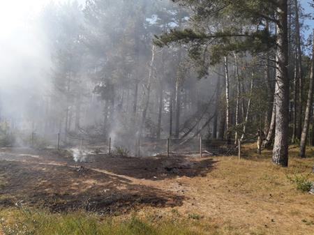 Formby Pinewoods Fire 270520